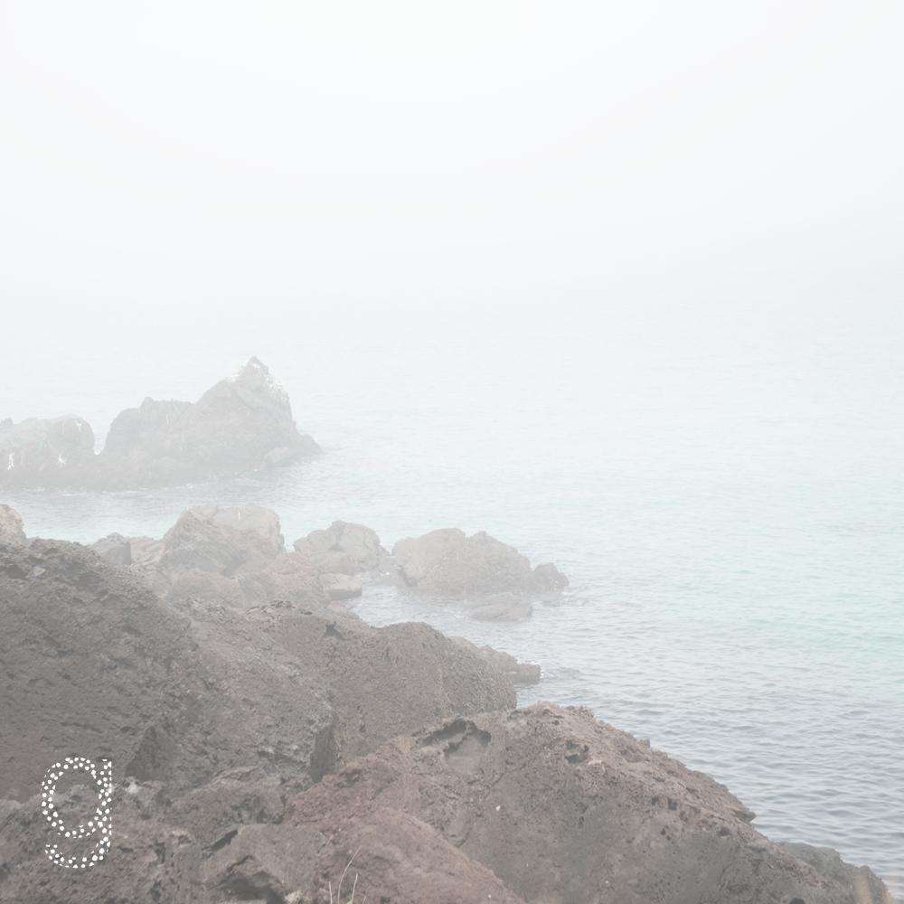 이타미준의 바다